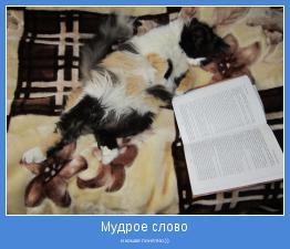 и кошке понятно.))