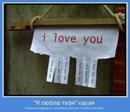 """Прекрасная фраза,не стесняйтесь отвечать:""""Я люблю тебя тоже"""""""