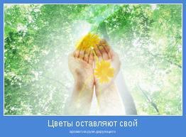 аромат на руке дарующего