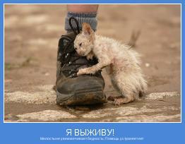 Милостыня увековечивает бедность; Помощь устраняет ее!