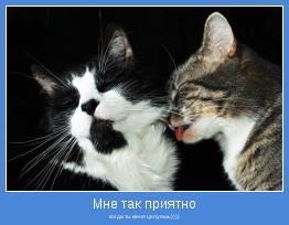 когда ты меня целуешь))))