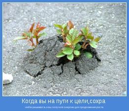 няйте решимость и вы получите энергию для продолжения роста