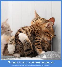 И обнимите свои родные души,ведь как прекрасно,что они рядом