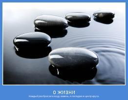 Каждый раз бросая в воду камень, я попадаю в центр круга.