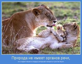 но создает языки и сердца, которыми говорит и чувствствует
