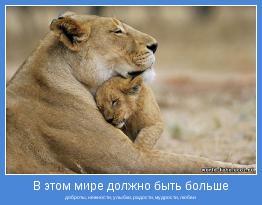 доброты, нежности, улыбки, радости, мудрости, любви