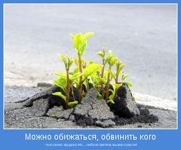 - то в своих трудностях ... либо встретить вызов и расти!