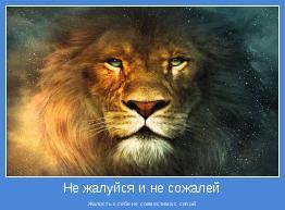 Жалость к себе не совместима с силой.