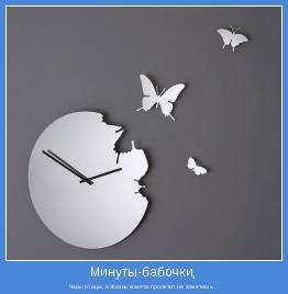 Часы-птицы, а Жизнь-комета-пролетит не заметишь...