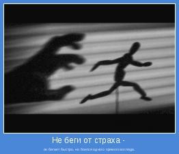 он бегает быстро, но боится одного прямого взгляда.