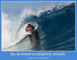 но можете научиться серфингу.