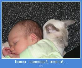 БОГ))