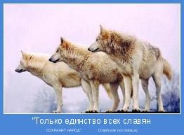"СОХРАНИТ НАРОД""               (Сербская пословица)"