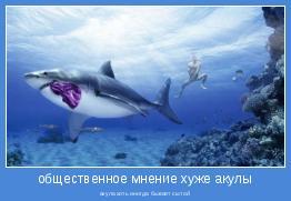 акула хоть иногда бывает сытой