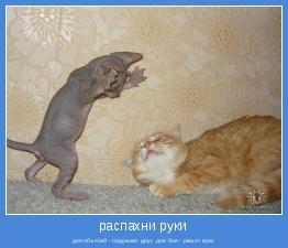 для объятий - подумает друг; для боя - решит враг