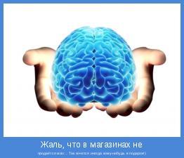 продаётся мозг... Так хочется иногда кому-нибудь в подарок!)