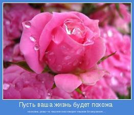 на жизнь розы—в тишине она говорит языком благоухания....