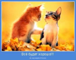 Не сомневайся!!!!)))))))