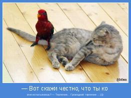 мне испытываешь? — Терпение… Громадное терпение …))))