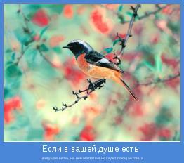 цветущая ветка, на нее обязательно сядет поющая птица