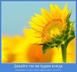 поворачиваться к свету, к добру и дарить радость и улыбки =)