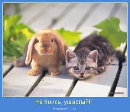 Я прикрою!!!... :-)))