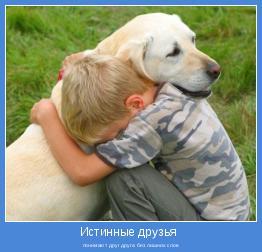 понимают друг друга без лишних слов