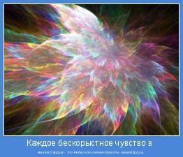 нашем Сердце - это Небесное сияние Красоты нашей Души.