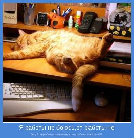 бегу,Есть работа спать ложусь,нет работы тоже сплю!!!
