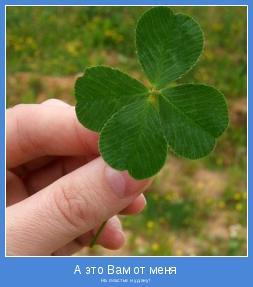 На счастье и удачу!
