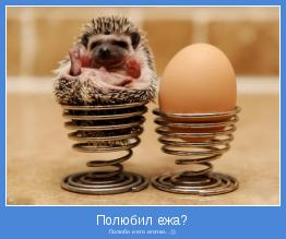 Полюби и его иголки...:))