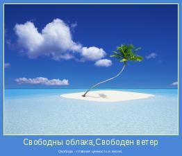 Свобода - главная ценность в жизни.