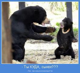 - Пап, там новые мотиваторы!!!)))
