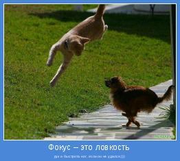 рук и быстрота ног, если он не удался.)))