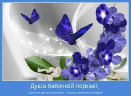 с цветка к цветку перелетает - пыльцу любви всё собирает