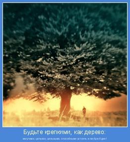 могучими, целыми, цельными, способными устоять в любую бурю!