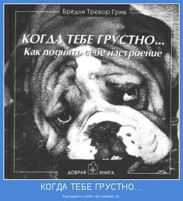 Как поднять себе настроение )))