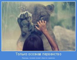 Природы, человек сможет обрести гармонию