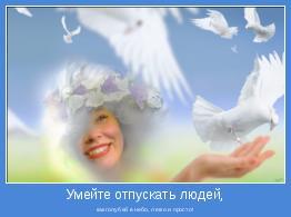 как голубей в небо, легко и просто!