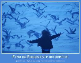 препятствия – будьте как ветер- присвистывайте и обходите их