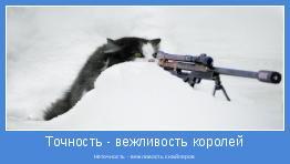 Неточность - вежливость снайперов