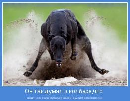 вокруг него стали сбегаться собаки. Думайте осторожно.))))