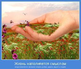 когда появляется желание творить добро, дарить радость людям