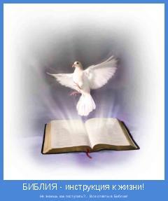 Не знаешь как поступить?... Все ответы в Библии!