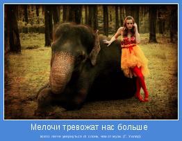 всего: легче увернуться от слона, чем от мухи. (Г. Уилер)