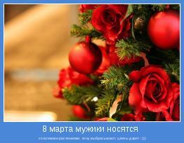 со всякими растениями: елку выбрасывают, цветы дарят :)))