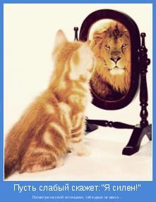Посмотри на свой потенциал, тебе дано не мало...