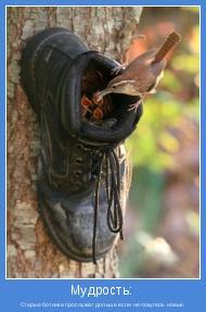 Старые ботинки прослужат дольше если не покупать новые.
