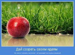 """Не спеши """"срывать неспелое"""", не принимай поспешных решений"""