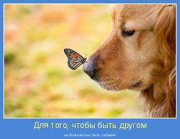 не обязательно быть собакой.